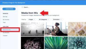 wix免費圖片素材